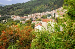 Real Estate in France