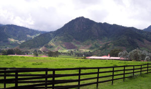 Panama's Shangri-La Valley: Happy and Stress-Free in Volcan