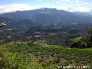 Improve Your Quality of Life: Move to Boquete, Panama