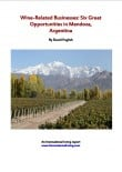 Wine-Related Businesses: Six Great Opportunities in Mendoza, Argentina