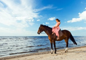 Exploring the World on Horseback