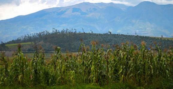 Ecuador Visa And Residency Information