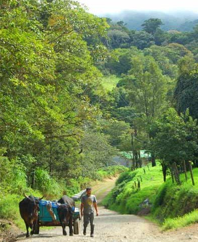 Moving to Costa Rica With a Young Family