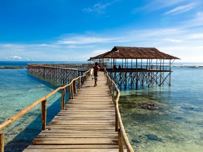 Island Extravaganza: Retire to the Philippines on $800 a Month