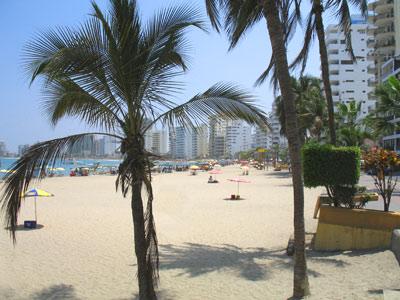 Beach Property Bargains in Ecuador