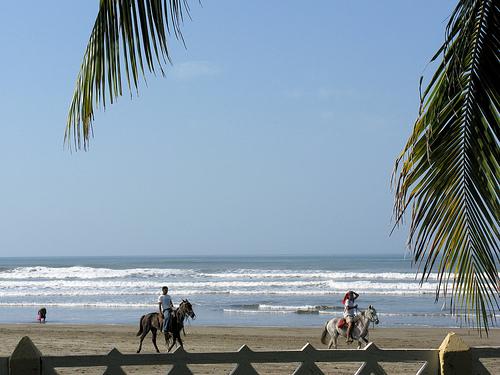 Nicaragua Real Estate Down 44%