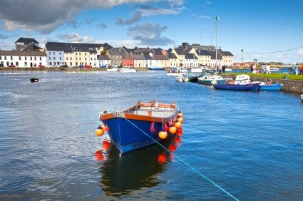 Find Bargains at Irish Property Auctions