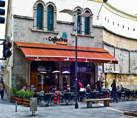 coffee-tree-cafe-cuenca