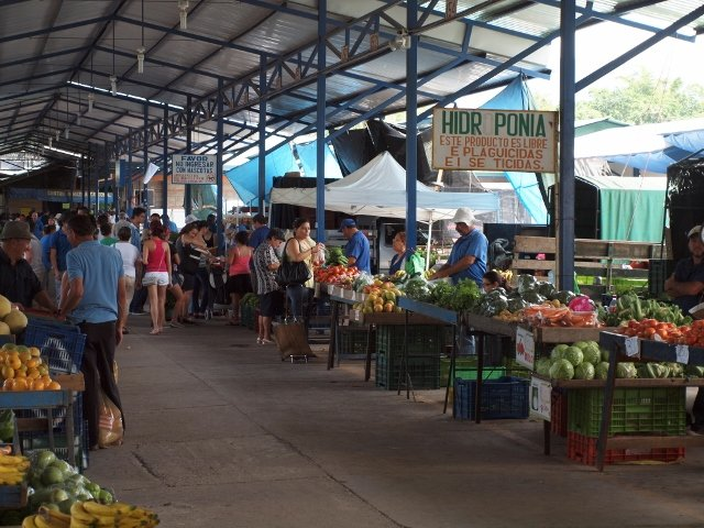 The feria, or farmer's market, held every Friday afternoon and Saturday morning in Greica. Ferias are a weekly occurrence in most Costa Rican towns. They're the best place to get fresh fruits and vegetables – for about half or less of what you'd pay in the States.