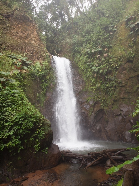 No matter where you go in the Central Valley, the natural wonders of Costa Rica aren't too far away. This waterfall is on the slopes of the Poas Volcano. There are national parks and private preserves like this one scattered throughout the region.