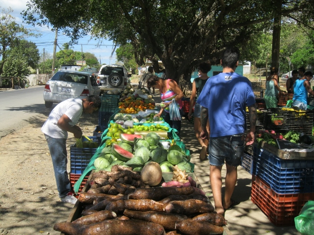 The best place to shop is at the local roadside fruit and vegetable stand, like this one in Villarreal, five minutes east of the popular beach town of Tamarindo.