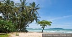 tamarindo-beach-views