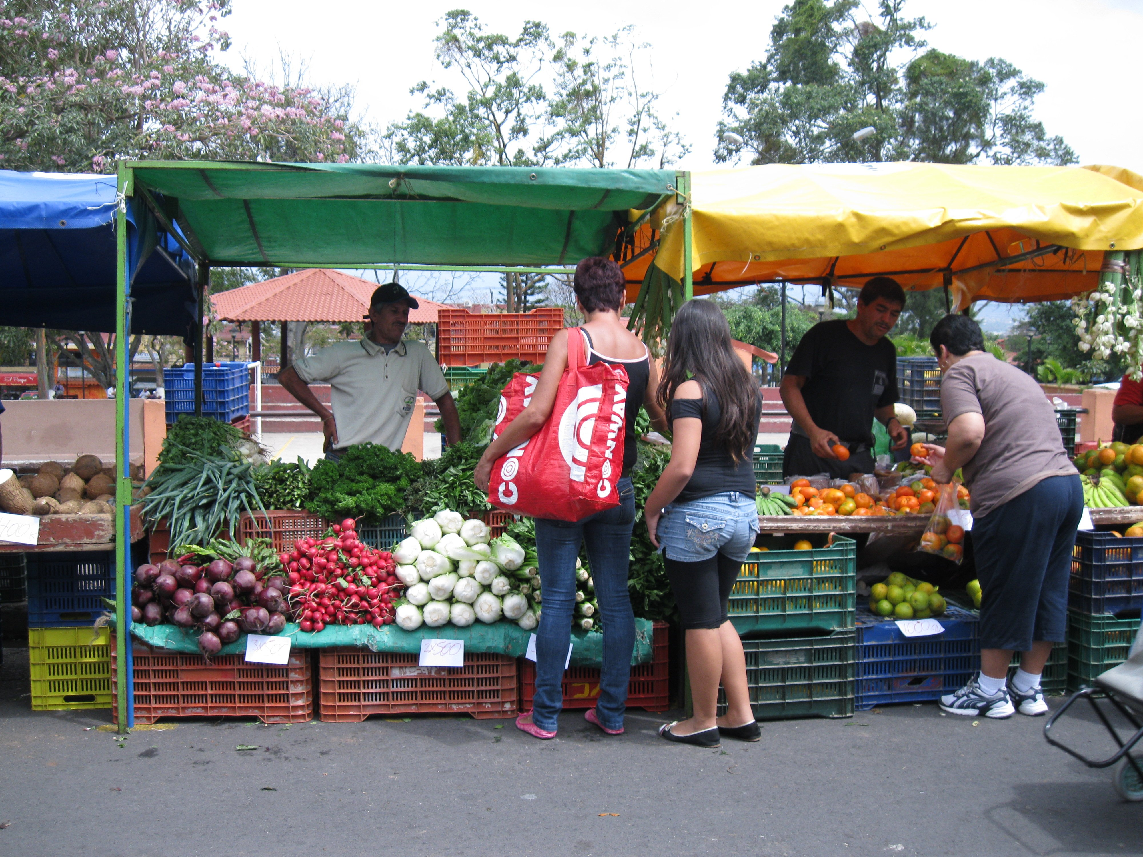 The feria, or farmers' market, is where everybody gets their fresh fruits and vegetables for the week. Stands are set up in a town square, on the main street, or by the side of the road.