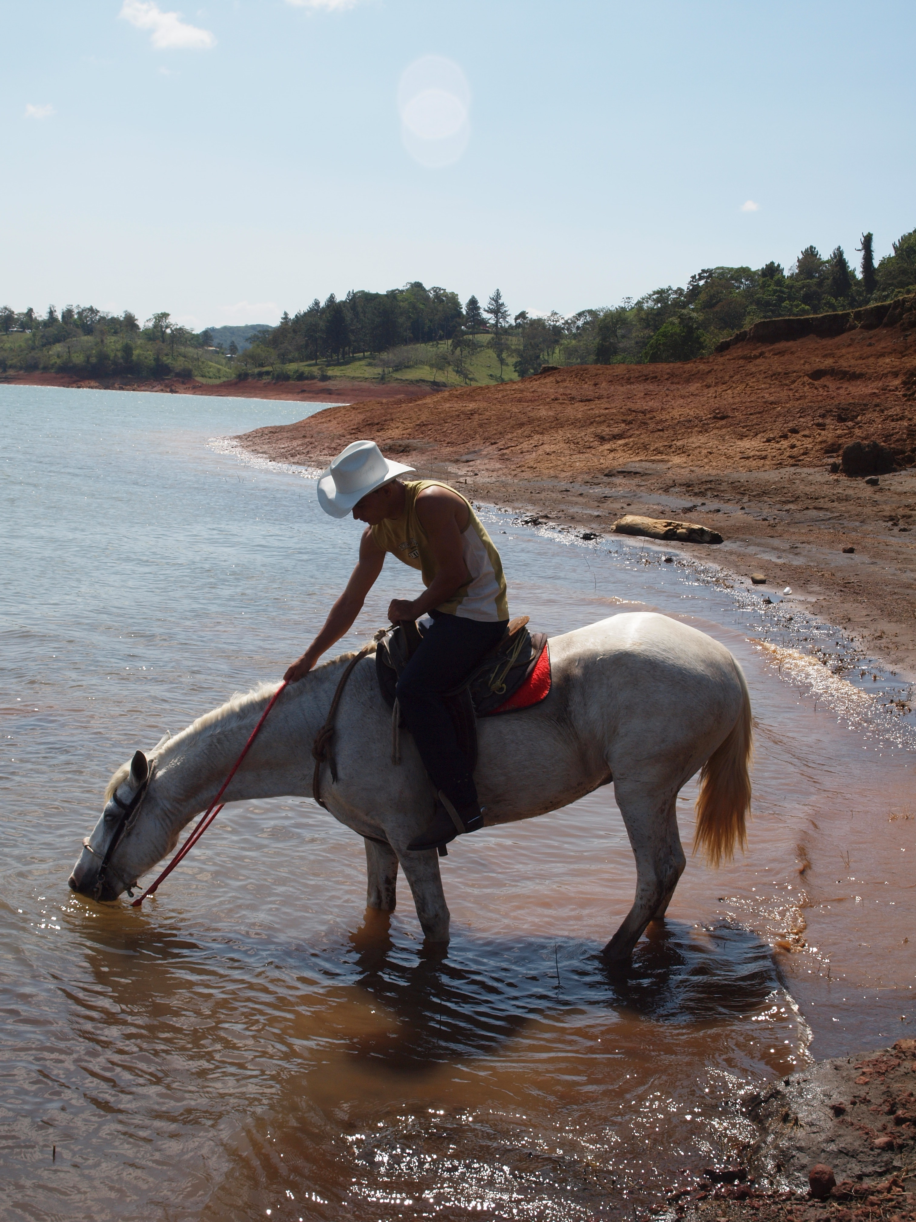 In rural areas, many people still use horses to get around. In this photo, a rider in Arenal stops by the lake for a drink.