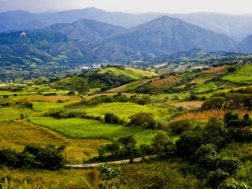 Ecuador enjoys a spring- like climate all year round.