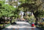 cuenca-street