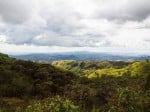 The cloud forest of Monteverde is a high-altitude rain forest where the clouds sweep through the trees, leaving a lush, moisture-rich environment.