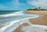 Page-26---Cumbuco-beach,-Ceara,-Brasil---Credit-----gionnixxx-Istock