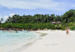 isla-iguana2