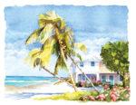 Carribean-Beach-House
