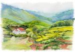 Malaysia-Cameron-Highlands