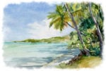 Tropical-beach-scene