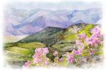 Ecuador_April-Cal-of-Events_-mountains