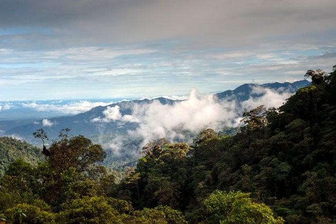 Ecuador, Moving Overseas