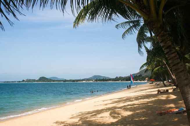 Stay in Koh Samui