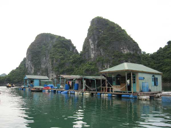 halong fishing village