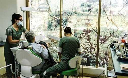 dental care overseas