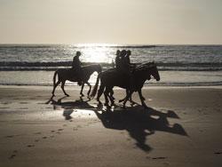 Horseback, Costa Rica
