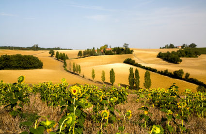 """Life Tastes Good in the """"French Tuscany"""""""