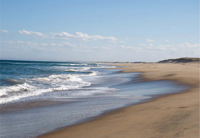 """Uruguay's """"Beach Province"""" For Less Than $60,000 an Acre"""
