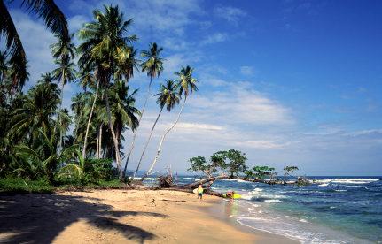 Opportunity Along Costa Rica's Secret Caribbean