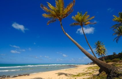 "Top Secret Property Deal in ""Beach City"""