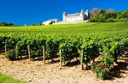 Living and Working in Burgundy, France