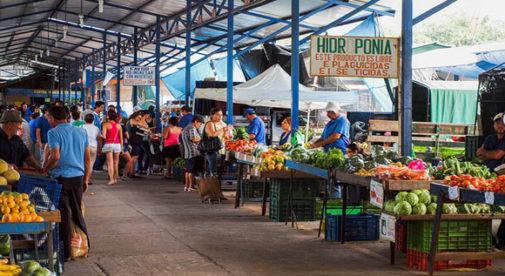 grecia-market-costa-rica