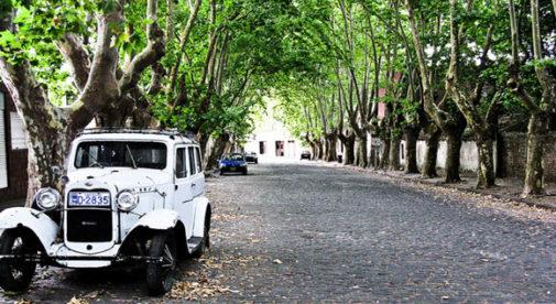 colonia-street