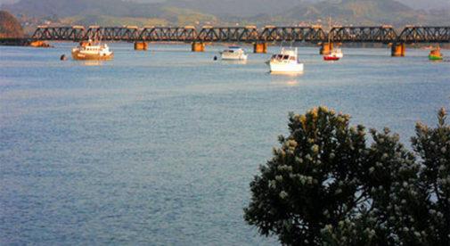 Tarangua-Bay-of-Plenty-New-