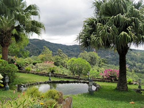An idyllic garden in Boquete.