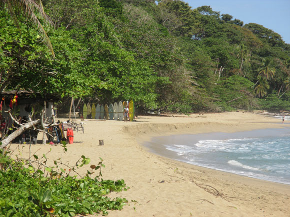 Playa Cocles is a popular surf spot. The beach bar across the street has great live music at night.