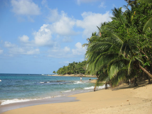 The golden sand beach of Punta Uva are both picturesque and tropical.