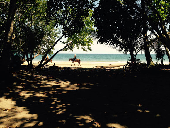 Enjoy horseback riding along Punta Uva beach where a tour can take you deep into the jungle that lines the beach.