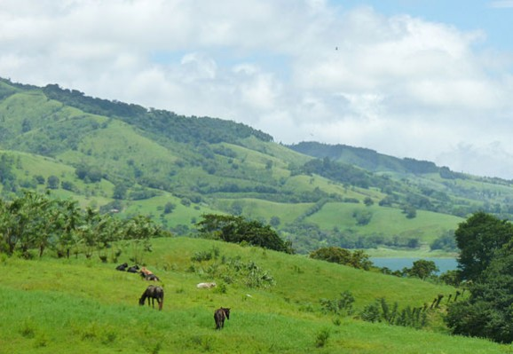 The Quiet Costa Rican Countryside