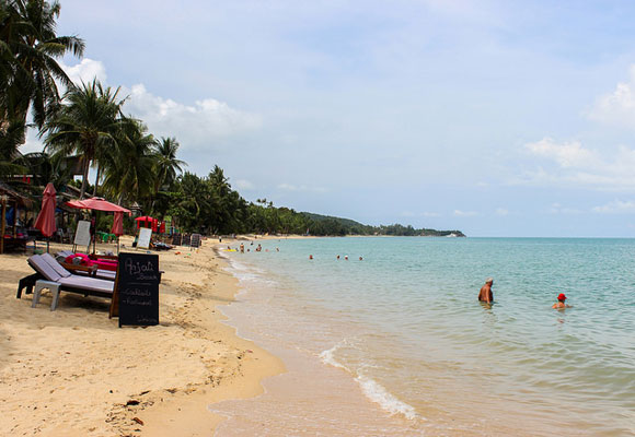The world-class beaches in Koh Samui are palm-tree lined and offer year-round tropical weather, ensuring your tan never fades.