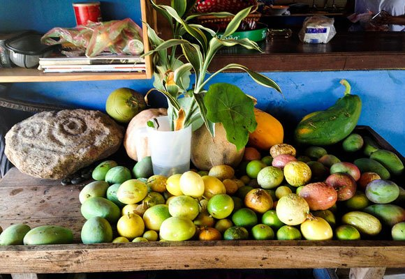 The bounty of Ometepe. A wide variety of tropical fruits and vegetables thrive here. The volcanic soil is a major reason why so much flora and fauna live here.
