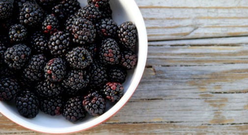 Theresa St John berries