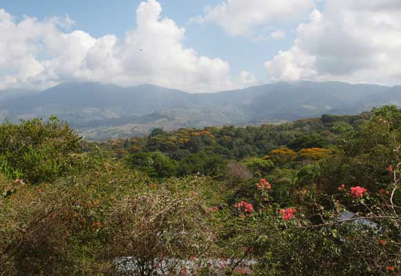 Looking inland, many expats have views of the surrounding jungle and mountains.