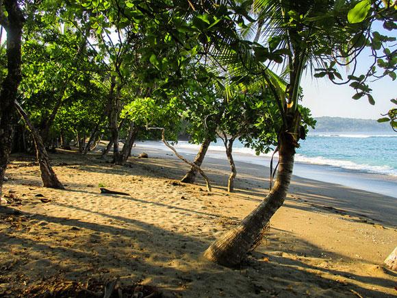 Drake Bay: Costa Rica's Pacific Coast Retreat